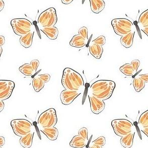 Monarch Butterfly in White