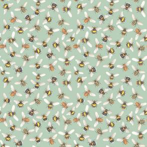 Bumblebees Mint