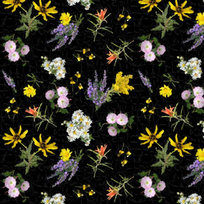 Colorado Wildflowers Black Chintz