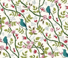 Rosehip and birds