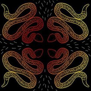 Warm Gradient Snakes