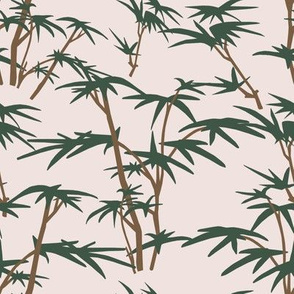 Bamboo Bush in  First Light