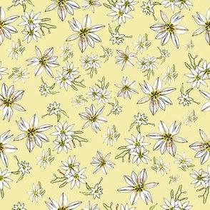 Paulas Wildflowers Yellow