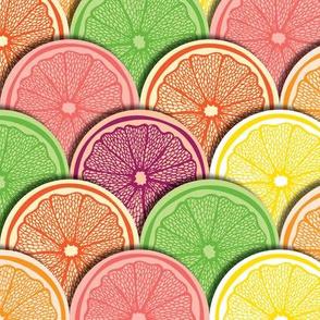 Citrus Fruit by ArtfulFreddy
