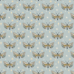 Moths - Small - Blue