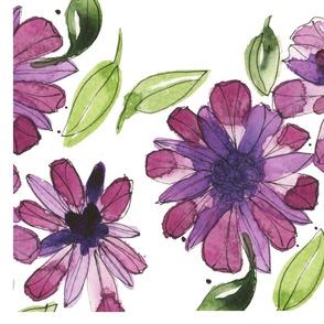 PurpleAsters_TT
