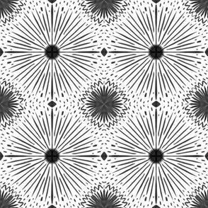 Starburst Brush Strokes - Black and White