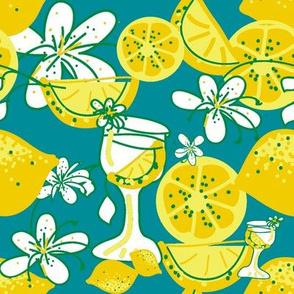 lemon-aid party ©2011 Jill Bull