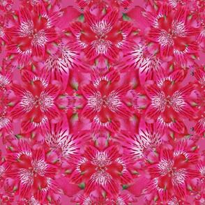 Kaleidoscope of Pink Iris Design Challenge on Hot Pink