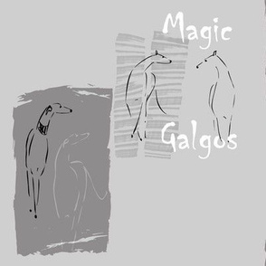 Magic Galgos, dark grey