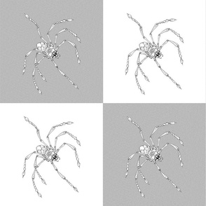2 spiders on white and grey background