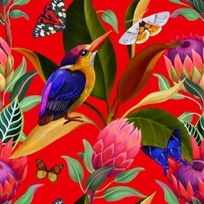 Exotic birds and butterflies among protea flowers