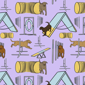 Simple Chesapeake Bay Retriever agility dogs - purple