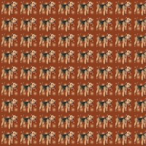smaller lakeland terriers