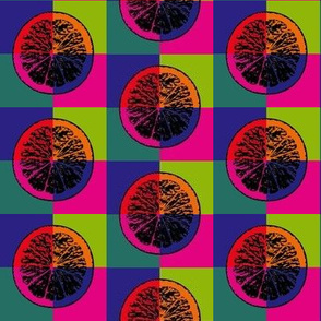 Pop art citrus 2