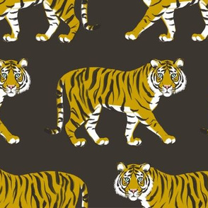 Tiger Parade -Ochre on Ebony by Heather Anderson