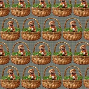 mastif baket for fabric
