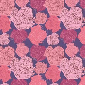 Botanical sketches_07