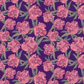 Botanical sketches_09