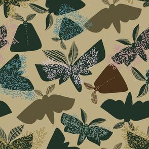Moths_06
