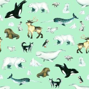 Arctic Pals / Watercolour Arctic Animals on Mint Background