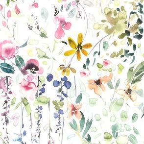 Jumbo // Eame's Wildflower Meadow