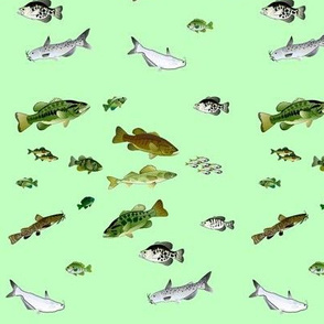Lake Fishes Pattern on green