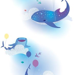 sea-sky