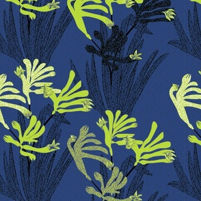Lime green kangaroo paws on dark navy