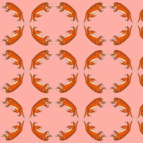 leopard salmon closer repeat