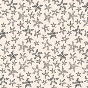Starfish Sands