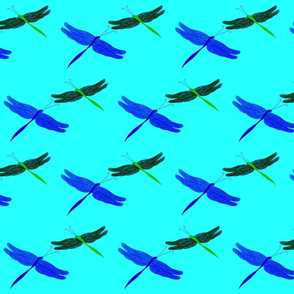 Dragonflies on Turquoise