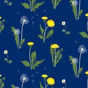 dandelion garden midnight