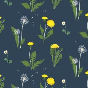 dandelion garden - evening