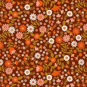 Wild Flowers -Apricot Brandy
