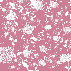 White Flowers on Rose Pink 24 x24
