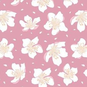 Cherry-blossom-soft-pink