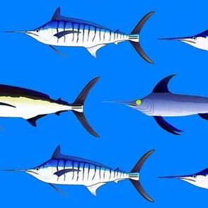 5 billfish on sea blue sized