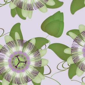 passion flower - purple