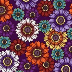 Gazania Kaleidoscope-Jewel Tones