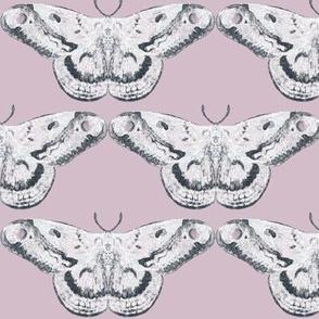 Pale Amethyst & White Mystic Moth
