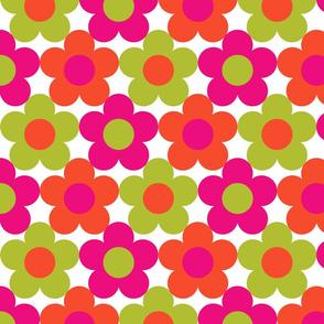 Disco Daisies Pink Orange Green