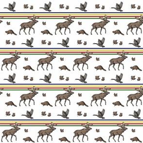 Canadiana horizontal stripe