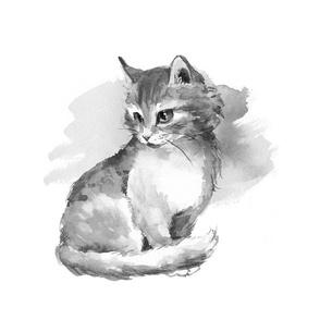 Kitten. Fat quarter