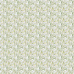 Baby Bear Blossom Daisy pattern