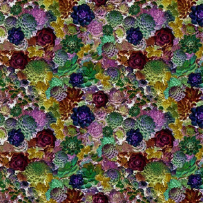 succulent tapestry jewels sm