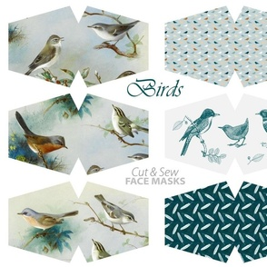 Bird cut & sew face masks -  painted birds, tiny birds, toile de jouy, feathers