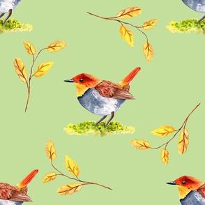 Japanese Robin Pattern