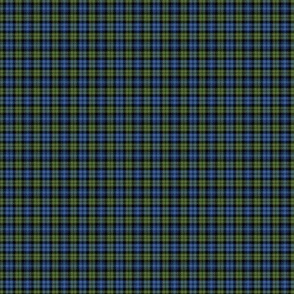 "Campbell tartan, 1"" muted bright"