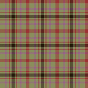 "MacDonagh tartan - 6"" olive and pink"